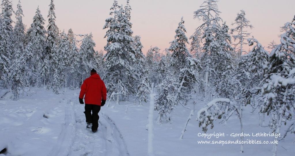Finland Wilderness