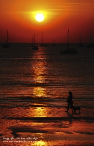 D-Sunsets 008
