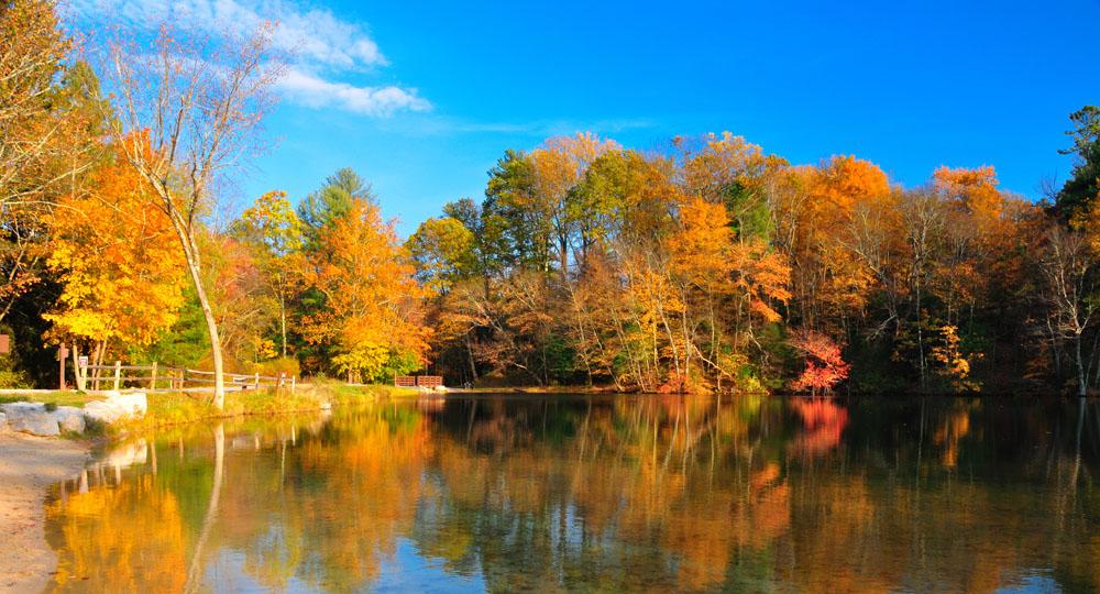 Fall aka Autumn foliage in the USA © www.depositphotos.com/