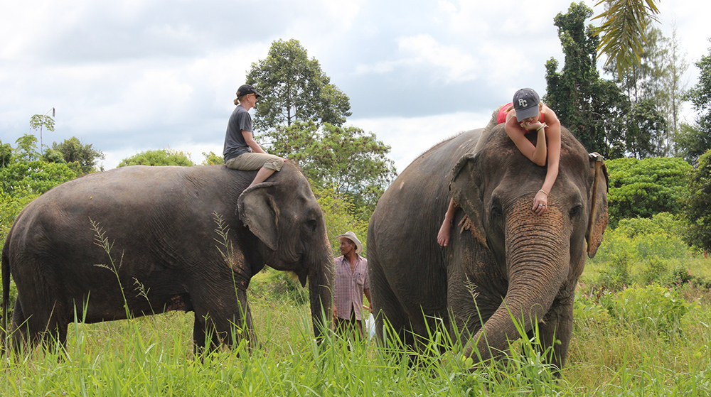 Volunteering - Helping with elephants in Thailand